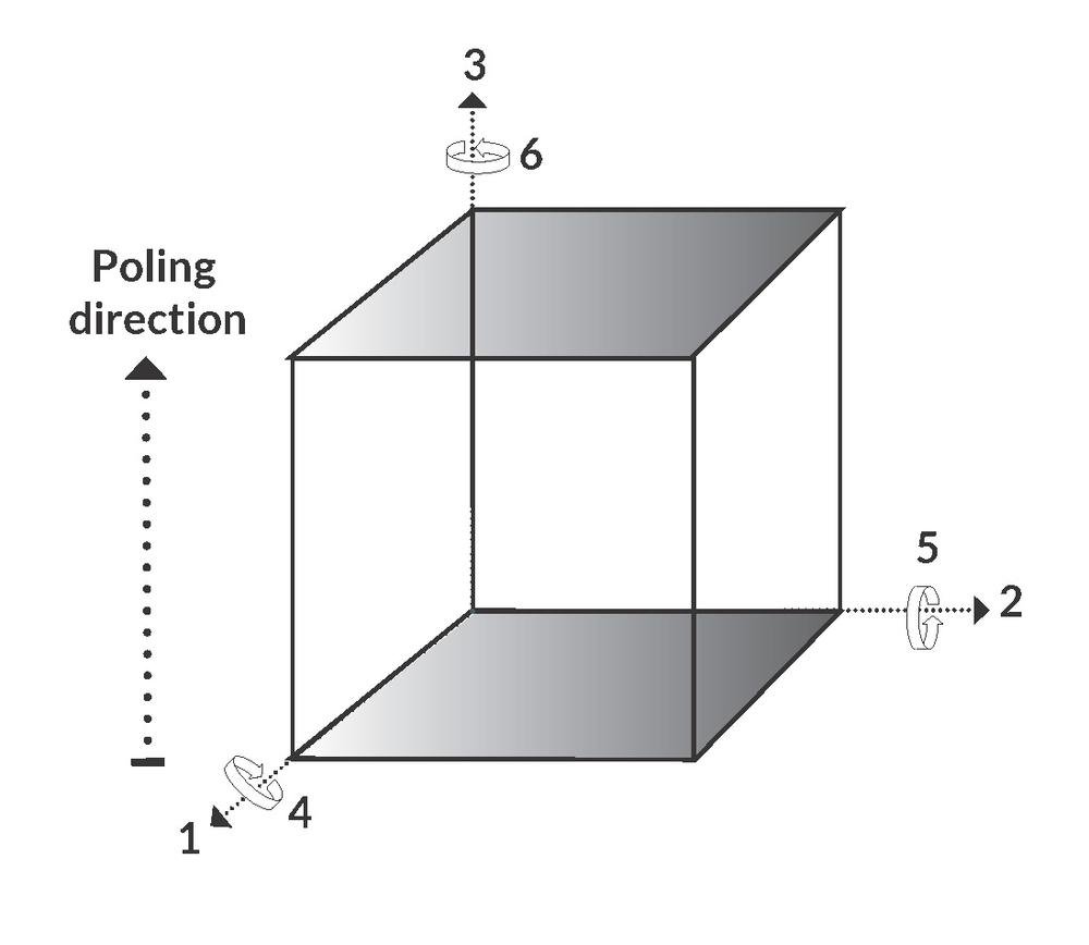 Figure with a piezoelectric bulk component showing the poling direction, contractions and expansions